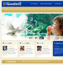 36-bt-goodwill
